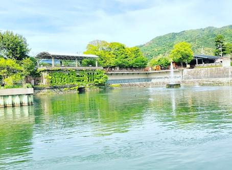 親睦遠足 in京都(十石舟めぐり編)☺