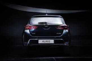 Auris007.jpg