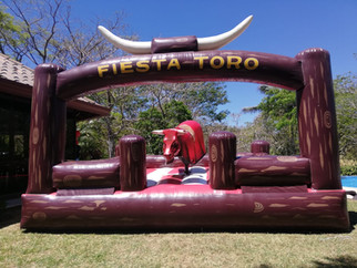 Toro rojo 001.jpeg