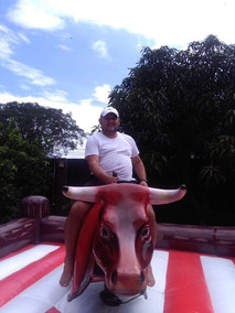 Toro rojo 001.JPG