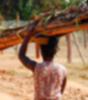 Woman gathering firewood
