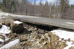 Beaver Damage/Tar Ridge Rd. Prentiss