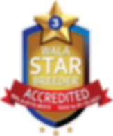 Neilly Accredited Star Logo Final.png