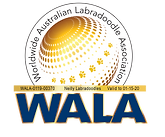 WALA Neilly WALA Logo-0119-00370.png