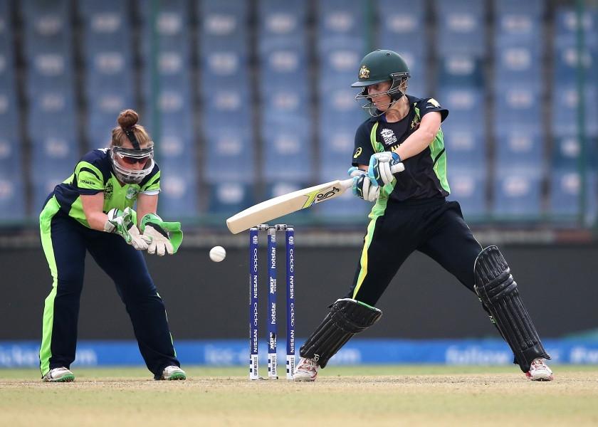 cricket 5.jp