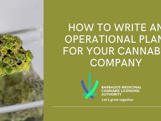 How to Write an Operational Plan for Your Cannabis Company
