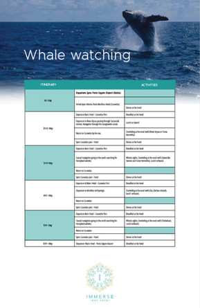 Whale Watching Itinerary.jpg