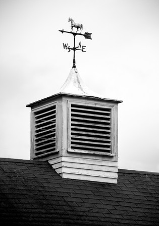 Weathervane atop a historical house