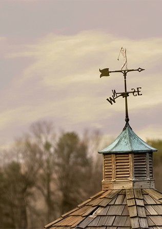 Weathervane on a golf course
