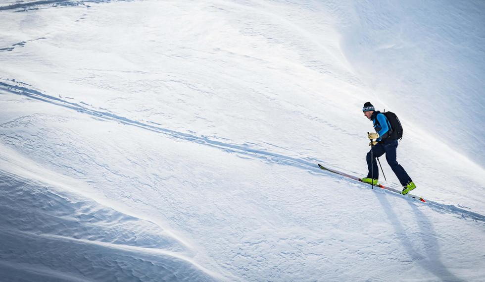 Movement Skis - All Skis - Freetouring S