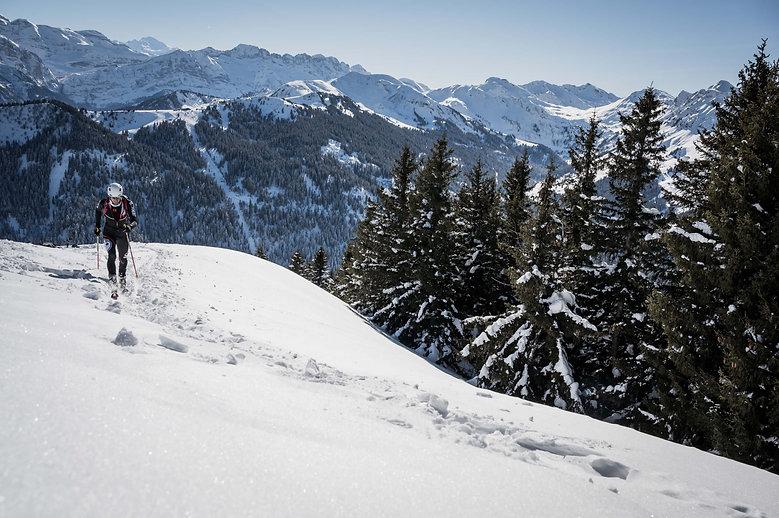 Movement Skis - Touring Tracks - Yannick