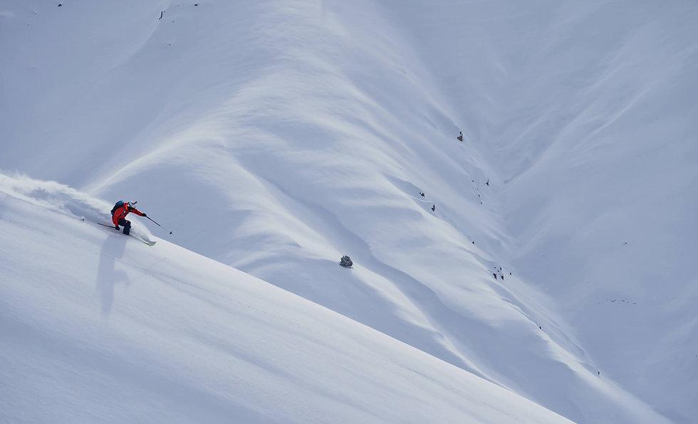 Movement Skis - Freeride Skis - GO.jpg