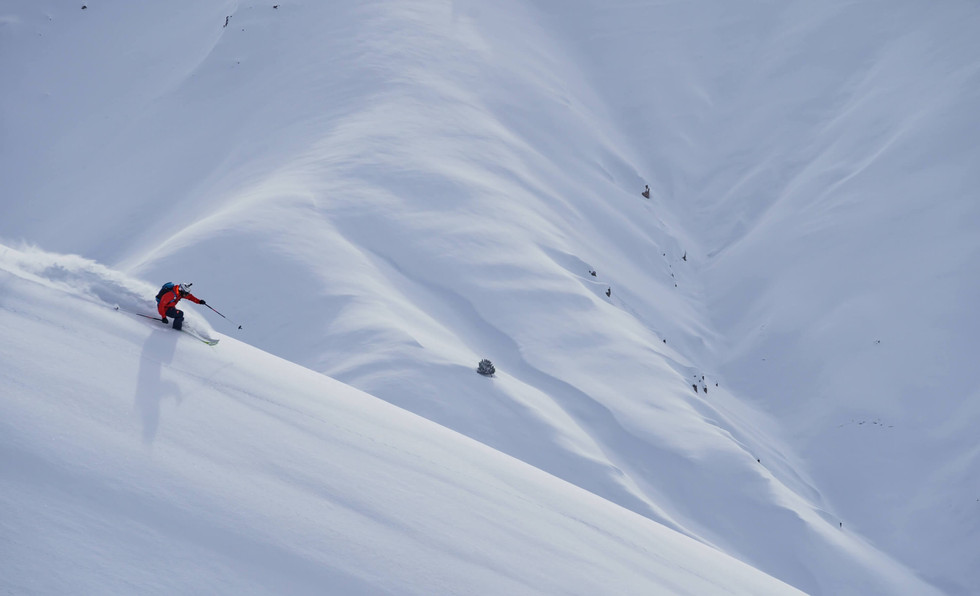 Movement Skis - Freeride Skis - GO.jpg
