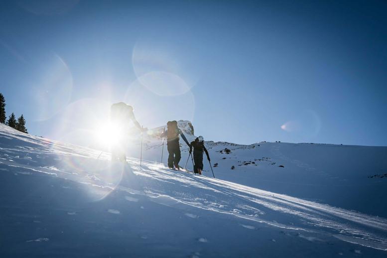 Movement Skis - Skimo Skis - Beyond The