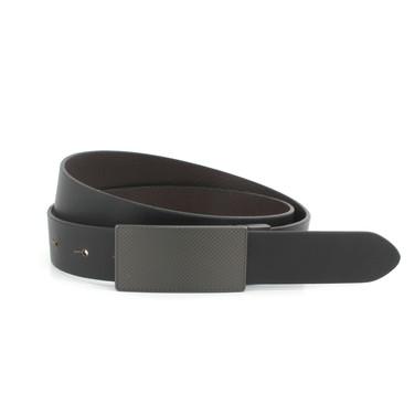 Plate Belt