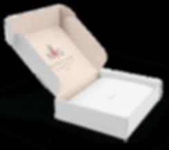 NG_box-inside-crop.png