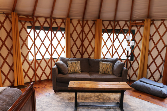 All of our furniture is kept updated and modern for the ultimate glamping experience, even for your pet!