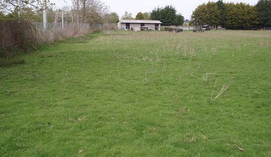hazlehurst_field.jpg