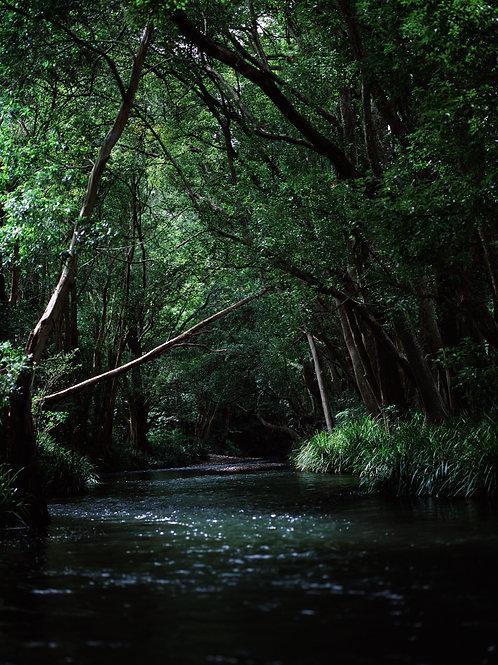 Orara River