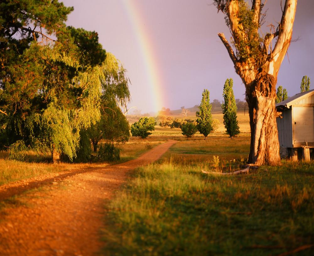 A rainbow settles over a farm near Armidale NSW