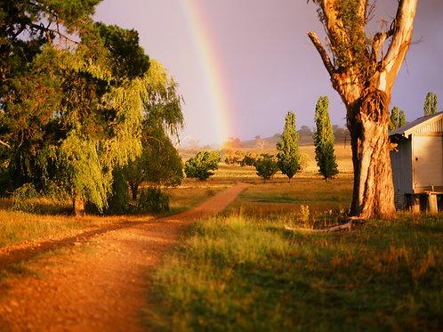 Rainbow Road 8 x 10