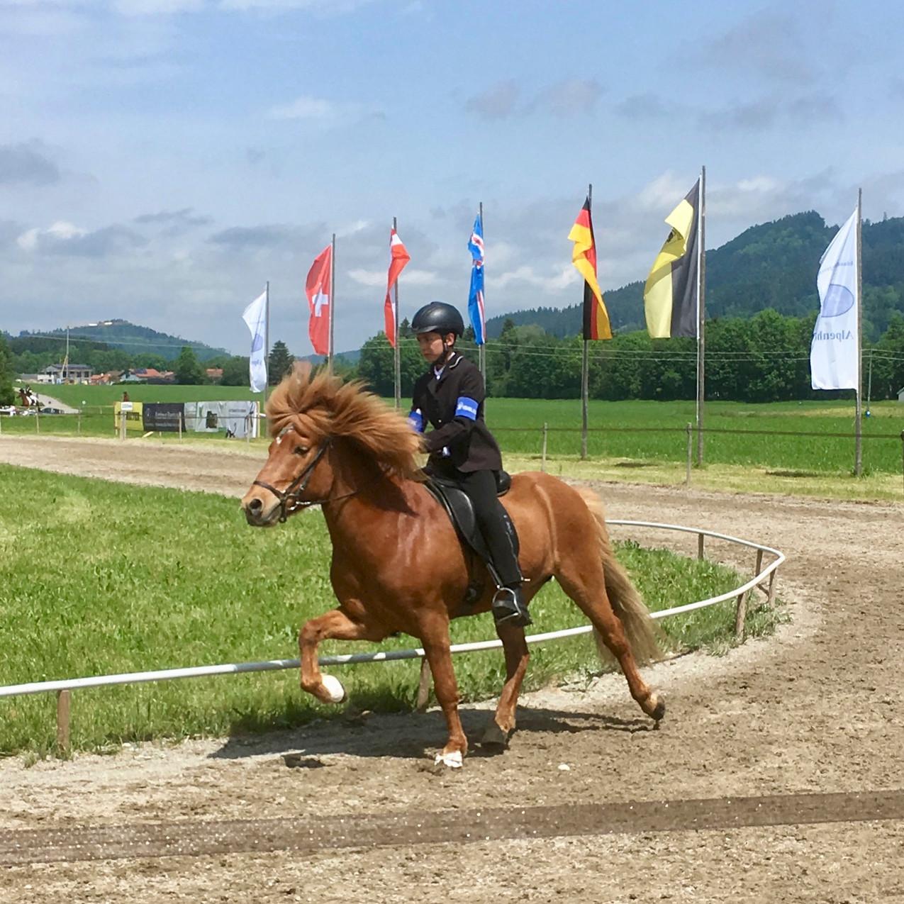 2019.06 - Alpenhof Turnioer - 3
