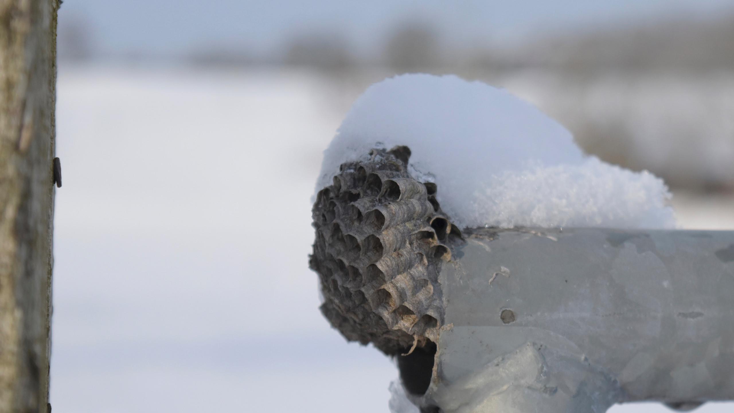2019.01 - Ein Tag im Schnee - 11