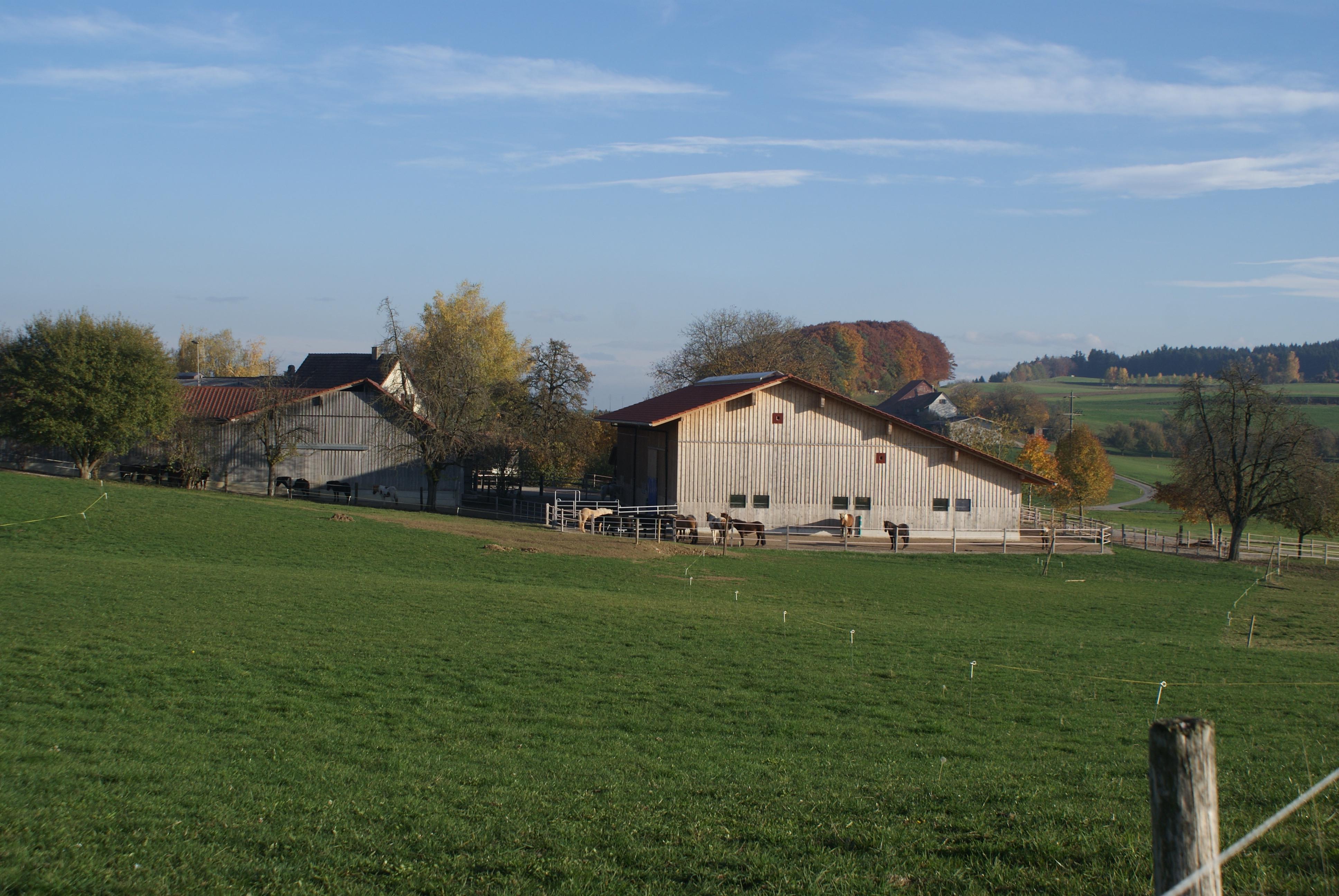 Unser Hof | Hof Weierholz Ostseite
