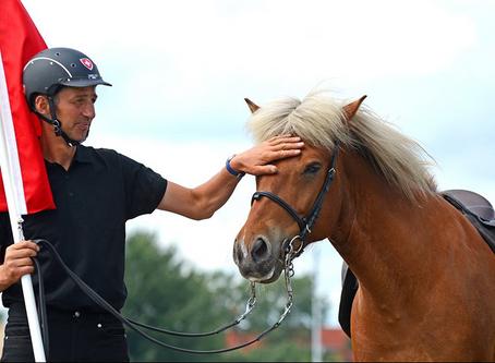 Markus ist für den Reiter des Jahres 2017 nominiert
