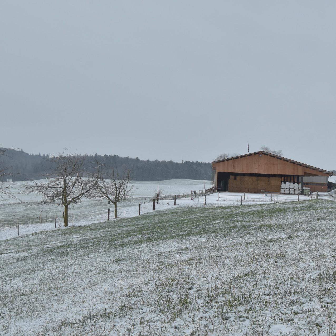 Der erste Schnee ist da!