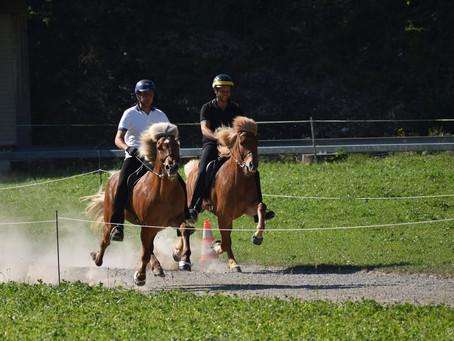 Erfolgreiche Schweizer Meisterschaften in Brunnadern