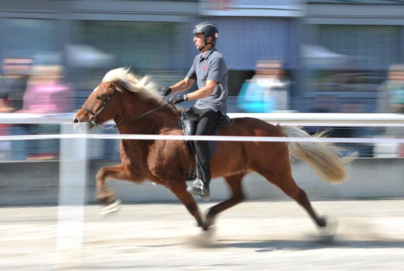 1.Basler Islandpferde-Sporttage