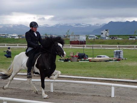 Erfolgreiches Landsmót 2014, Island