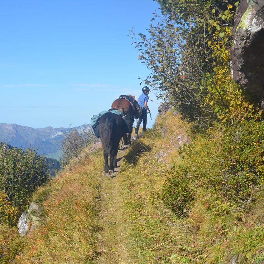 Alpenritt Flumserberg