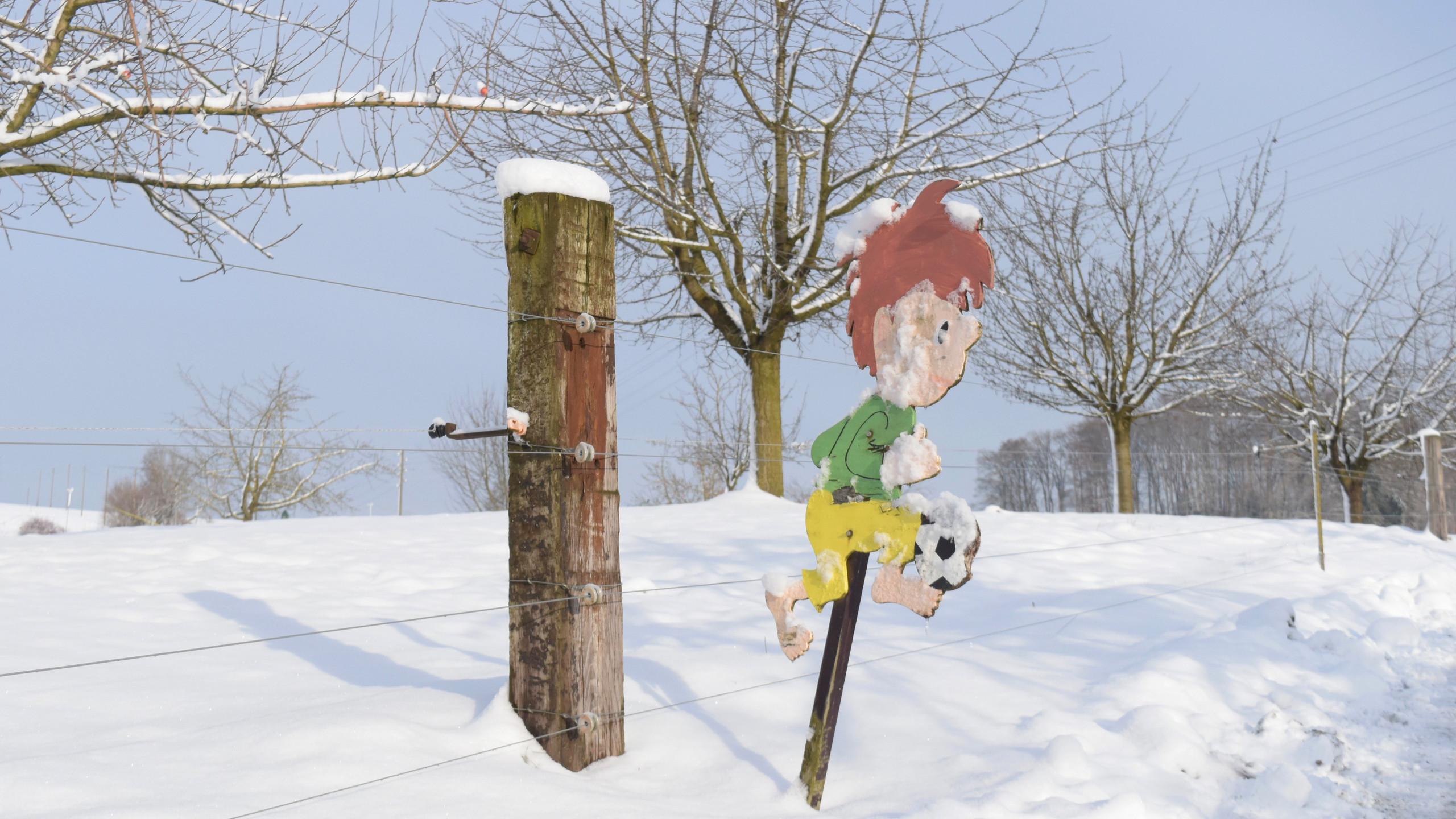 2019.01 - Schnee auf dem Weierholz