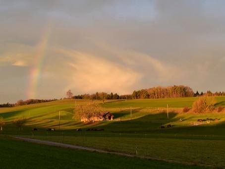 Ein Regenbogen über dem Weierholz