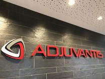 Logo Adjuvantis Steuerberater
