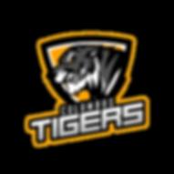 Columbus Tiger - Logo +TN+L.png