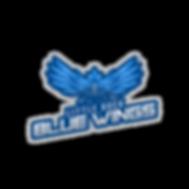 Little Rock Blue WIngs - TN+L.png