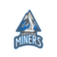 Denver Miners - Logo + TN + L.png