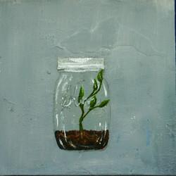 Jar with plant
