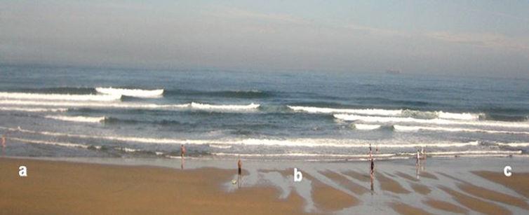 ¿Qué zona de esta playa elegiría para bañarse?