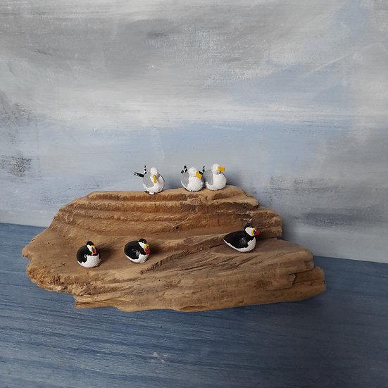 3 Gulls and 3 Puffins            7cm(h)x17cm(w)x6cm(d)
