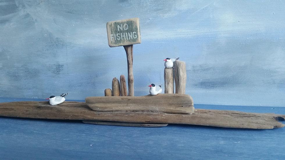 3 naughty terns         11cm(h)x40cm(w)x5cm(d)
