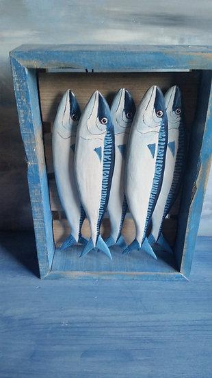 5 Mackerel in a blue box        32cm(h)x24cm(w)x7cm(d)