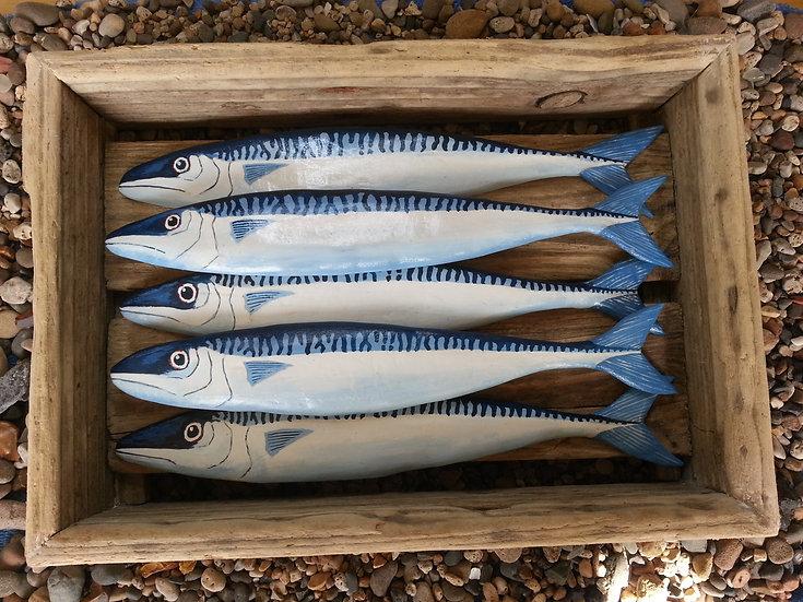 Box of Mackerel
