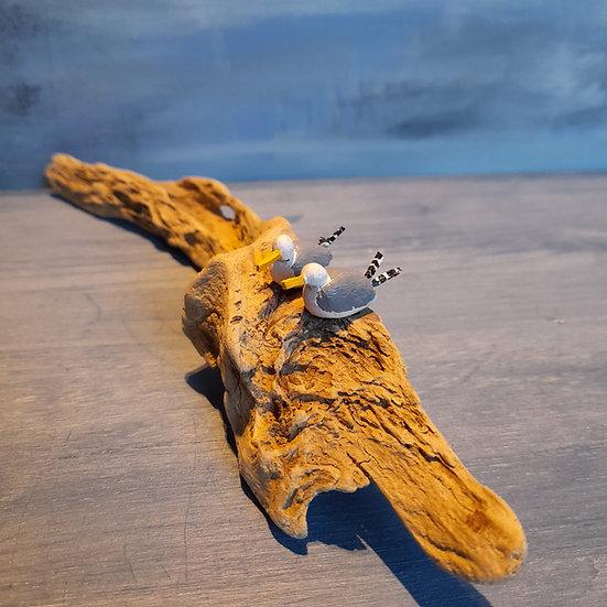 2 Gulls on driftwood        4cm(h)x31cm(w)x4cm(d)