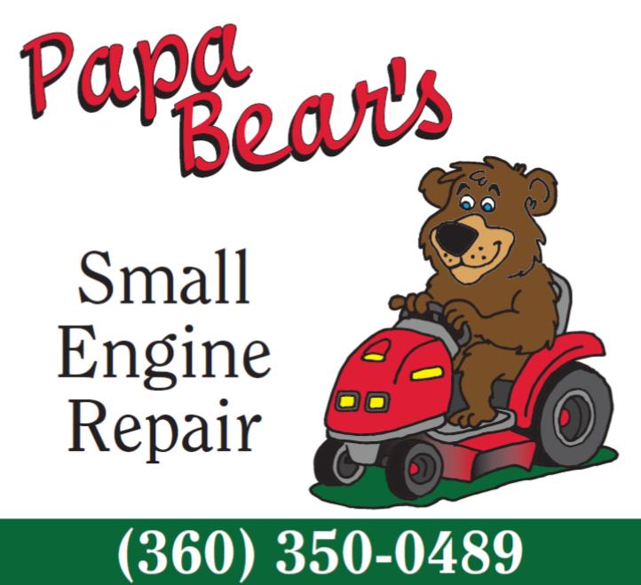 Chainsaw Papa Bear S Small Engine Repair United States