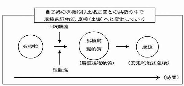 tryr図1.jpg