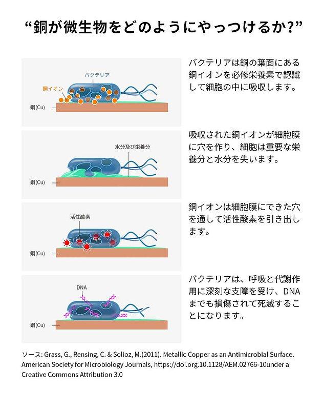 cg01_09.jpg